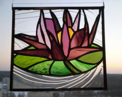 The water lily by ioglass