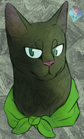 WizardCat Headshot by TropicaIDeer
