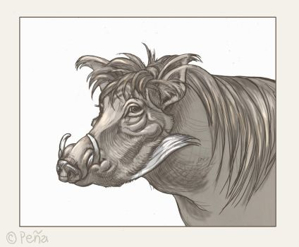 Warthog by Reptangle