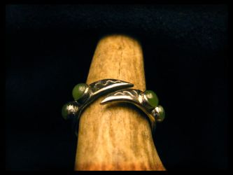 Elemental Ring of Water by LaughingScarab