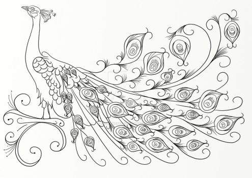Peacock Coloring Page by LorraineKelly
