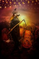The Pumpkin Picker by maiarcita