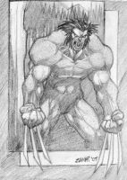 Wolverine Sketch by santivill