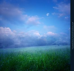 Moon over Meadow Premade by kuschelirmel-stock