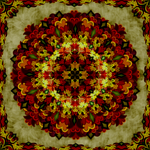Red Flower - Mandala by Gandalf1234