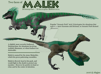 Malek Raptor Reference by Ahgjan