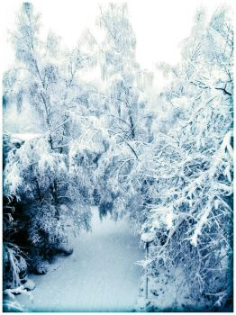 Wintersnow by Dragonic