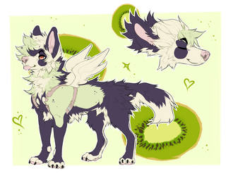 Kiwi Dogger Auction [CLOSED] by C-A-R-D