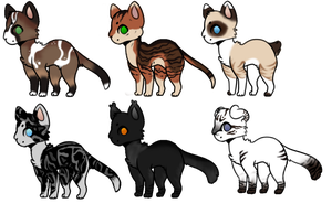 Cat Adopts by Silk-y