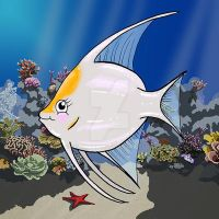 Annabelle the Angelfish