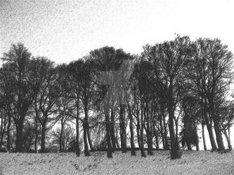 Sketch of Trees by Spe4un