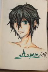 How I imagine: Aspen Leger [The Selection] by MakkaHasami04