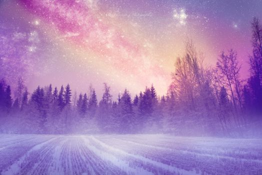 Silent night by Floreina-Photography