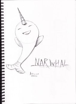 my narwhal ID by reptile449