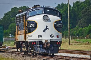 The Show Pony- NS 4270 by CSX5344