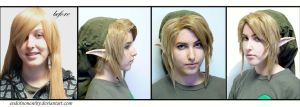 Link Wig Montage by endofnonentity