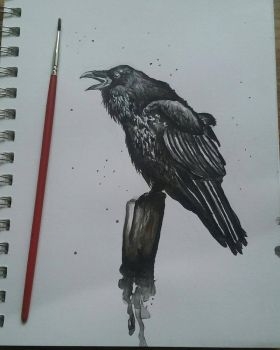 Raven Ink Painting by Lynxcall