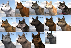 Wolf quest finished by azurehowlshilach on deviantart wolf quest my wolves by adela555 ccuart Choice Image
