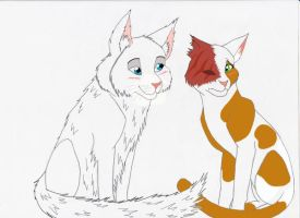 Brightheart and Cloudtail by Bleu-mademoiselle