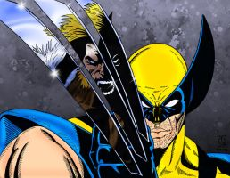 Wolverine vs Sabretooth by pascal-verhoef