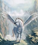 Pegasus by Distorded