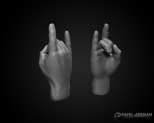 Hand - Rock U (Anatomy study) by Pavel-Abrham