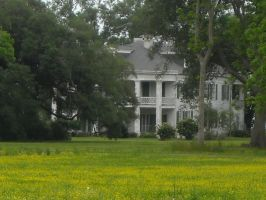 New Orleans Plantation by waliensunflower