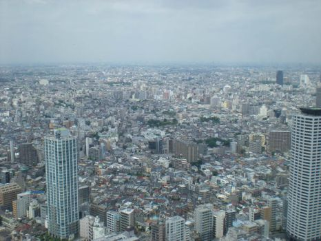 View from the Toucho by Caterfree10