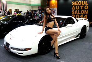 Corvette Lady by toyonda