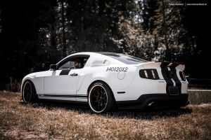 White Mustang by AmericanMuscle