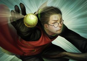 Quidditch by TheKucing
