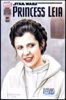 Princess Leia sketch cover by whu-wei