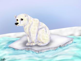 Polar Bear by mlppictured