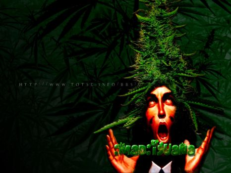 :mad:ijuana by totseinfo