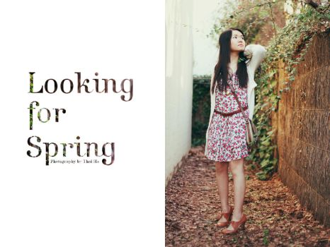 Looking for Spring 01 by hinnie
