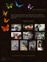 Butterfly Rainbow 3-D CSS by NellyAsher
