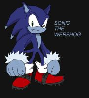 sonic the werehog by ss2sonic