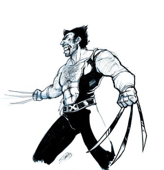 Wolverine quick sketch by Luzerrante