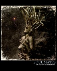 Soul Mates 1 by parablev