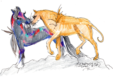 Dusker Horse Equine Pony Equus breed pic romantic by StephanieSmall