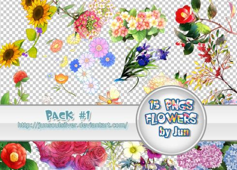 Pack 15 pngs by junsoulsilver by JunSoulsilver