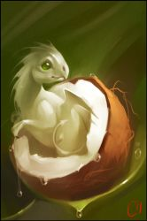 Coconut dragon by GaudiBuendia