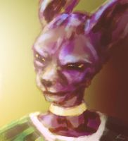 Beerus 3 by jedera01
