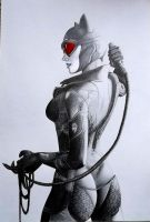Arkham City: Catwoman by andrewUA