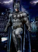 Batman, the  Gotham's guardian by peterg666666