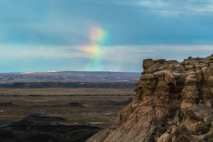 A Splash of Color in the Desert by charlesheadphotos