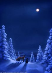 Polar Nights by Lhuin