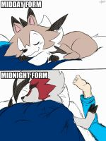 Sleep with Lycanroc