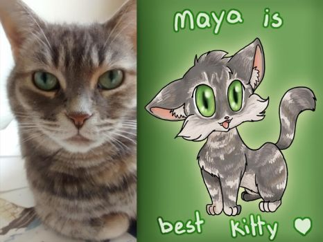 Maya is Best Kitty by tsuta