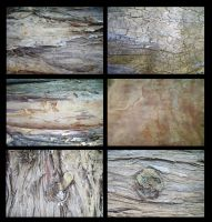 Texture Pack - Bark by faceless-stock